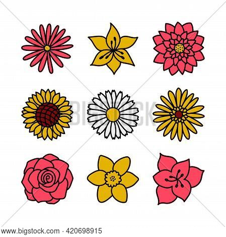 Color Flower. Doodle Vector Set. Hand Drawn Cartoon Sketch Floral Collection. Types Of Flowers. Cham