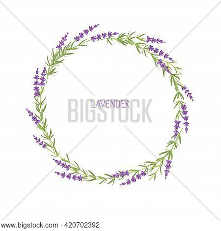 Lavender Wreath. Flowers Frame. Vector Flat Grass Lavender Illustration. Lavender Flowers Collection