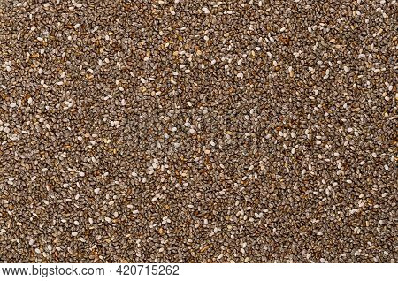 Chia Seeds, Background, From Above. Fruits Of Salvia Hispanica. Oval And Gray Fruits With Black And