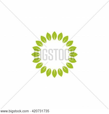 Round Wreath With Green Leaves. Floral Fresh Text Box Or Label. Summer Frame On White Background. Ve
