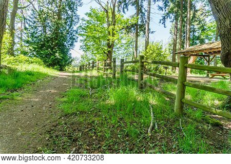 A Path And Woodend Fence At Saltwater State Park In Des Moines, Washington.