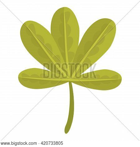 Baobab Leaf Icon. Cartoon Of Baobab Leaf Vector Icon For Web Design Isolated On White Background