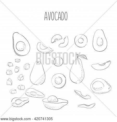 Vector Set Of Hand Drawn Outline Black Avocado. Food Hand Drawn Vector Illustration. Design For Pack