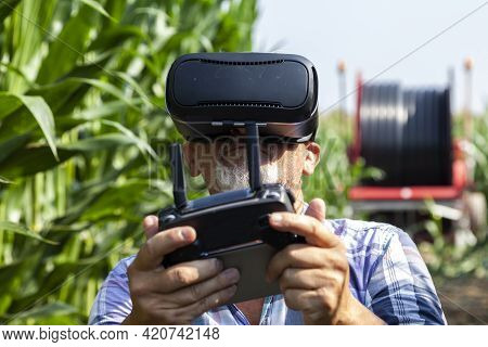 Modern Technological Farmer Analyzing The Growth Of Corn By Flying A Drone Over His Cultivated Field