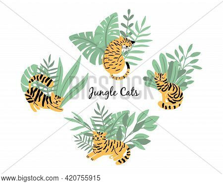 Cats Tigers. Yellow Black Cat, Pet Look Like Wild Animal. Kitten In Jungle Plants, Isolated Garden A