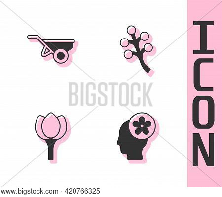 Set Human Head With Flower Inside, Wheelbarrow Dirt, Flower Tulip And Blossom Tree Branch Icon. Vect