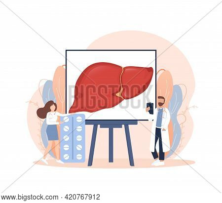 Flat Illustration With Liver On White Background For Medical Design. Characters In Cartoon Style. Ve