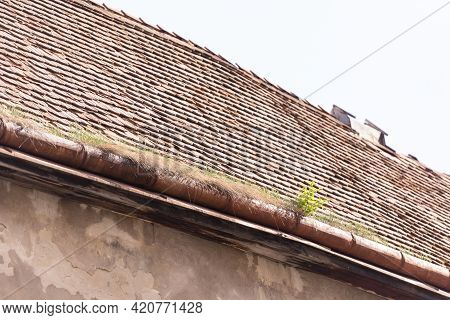 The Roof Is Made Of Clay Tiles. The Clay Gutter Is Heavily Overgrown With Grass.