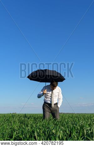 businessman poses with umbrella in a field, green grass and blue sky as background