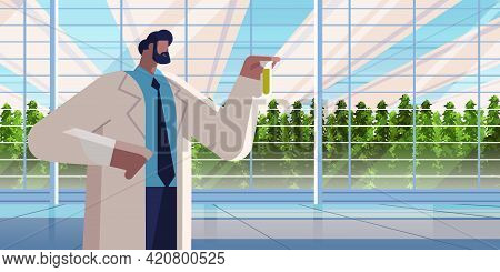 Agricultural Engineer Holding Test Tube With Chemicals Man Farmer Researching Plants In Greenhouse A