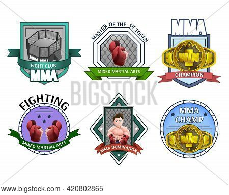 Martial Fighting Art Mma Champions League Clubs Emblems Labels Icons Collection Abstract Isolated Ve