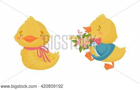 Cute Yellow Duckling Carrying Bunch Of Flowers And Sitting Vector Set