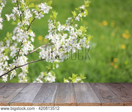 Rough Wooden Table, Decking On A Blurred Spring Background With A Flowering Branch. Table Top, Outdo