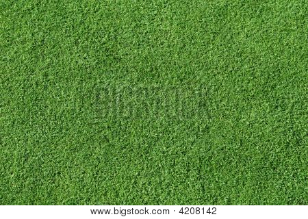 Smooth short trimmed grass like the putting green in golf. poster