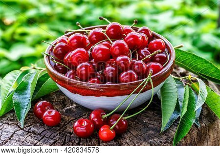 Fresh Sour Cherries In A Wooden Bowl And Green Leaves On The Board. Fresh Ripe Sour Cherries.cherrie