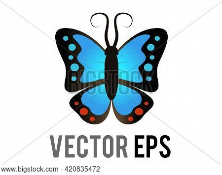 Vector Beautiful Winged Insect Butterfly Icon With Blue And Black Morpho Wings Outspread