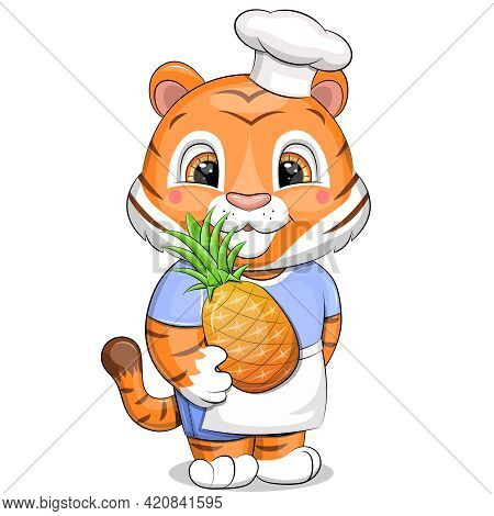 A Cute Chef Tiger In A Chef Hat And Apron Holds A Pineapple. Vector Illustration Of An Animal Isolat