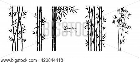 Set Of Bamboo Silhouette On White Background. Black Bamboo Stems, Branches And Leaves. Vector Illust