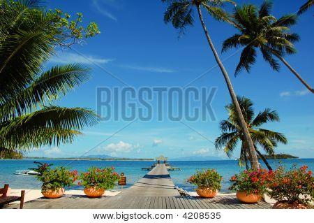 Bora Bora Boardwalk And Pier