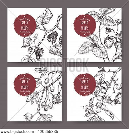 Set Of Four Labels With Garden Strawberry, Black Mulberry, Hawthorn And Blackthorn Sketch.