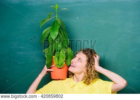 Home Garden. Houseplants Benefits And Positive Influence On Health. Easy Houseplants. Take Good Care