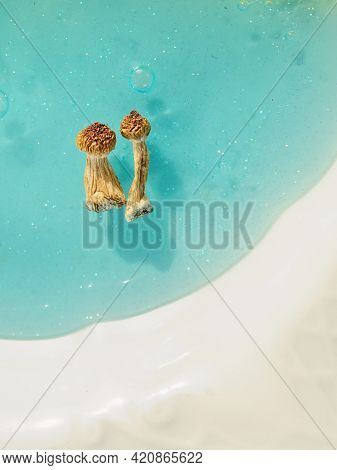 Psilocybin Mushrooms On Blue Background. Psychedelic Magic Trip, Cosmic Consciousness. Dried Psilocy
