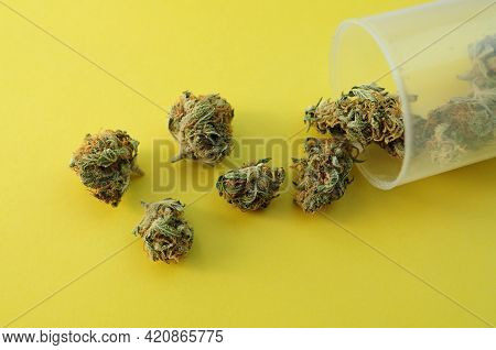 Marijuana Micro-dosing Concept. Cannabis Buds In Plastic Cup On Yellow Background. Cbd Therapy, Medi