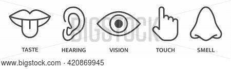 Five Senses Hear, Taste Smell, See, Feel Sight, Touch, Look Vision. Sense Sign Set. Ear, Eye Nose, M