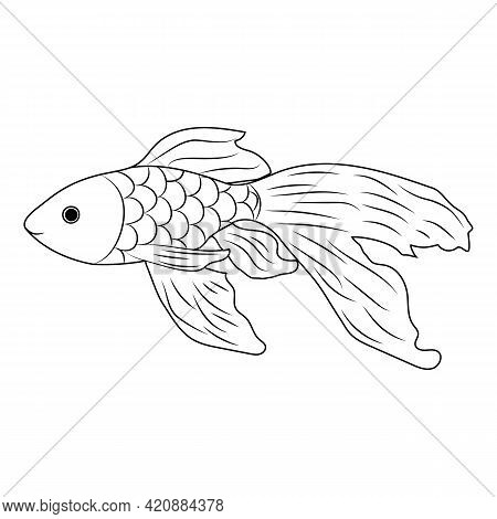 Handmade Goldfish In Doodl Style. Vector Illustration.