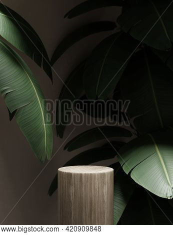 3d Background With Wooden Podium Display. Nature Wood Pedestal With Tropical Banana Palm Leaf And Sh