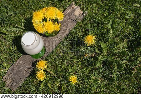 A Glass Of Fresh Cow's Almond Milk Sits Next To A Bouquet Of Dandelions On The Green Lawn. Spring Fl