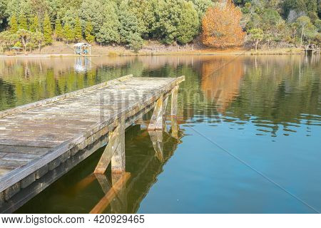 Rustic Wooden Pier Leading Int Water Of Small Lake Reflection In Bay Of Plenty In Autumn