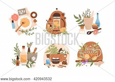 Homeopathy And Herbal Remedies Set. Homeopathic Treatment And Phytotherapy Concept. Traditional Herb
