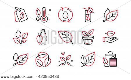 Plants Line Icons. Leaf, Growing Plant And Humidity Thermometer. Water Drop Linear Icon Set. Linear