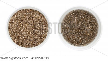 Chia Seeds, Raw And Soaked In Water, In White Bowls. Fruits Of Salvia Hispanica, Very Hygroscopic, A
