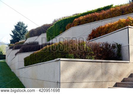 Tiered Beds Of Granite With Hedge Bushes