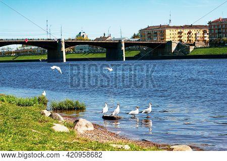 Tver, Russia, May 2021: View Of The Novovolzhsky Bridge On The Volga River From The Afanasy Nikitin