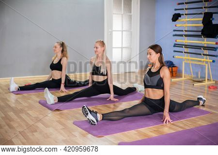 Women In A Group Doing Exercises. Sports. Healthy Lifestyle.