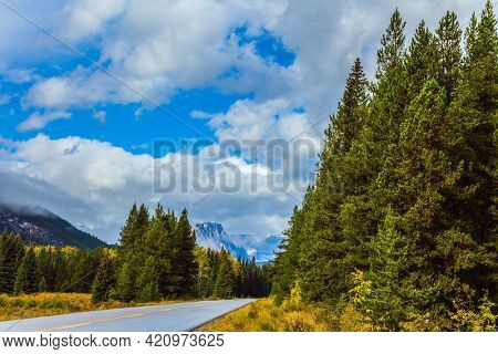 Great road crosses the Canadian Rockies. Sunset. Cloudy fall day in the Canadian Rockies. Evergreen forest grows along the side of the road. Concept of active, eco and photo tourism