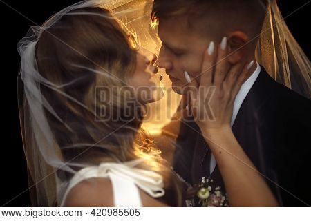 Stylish Happy Bride And Groom Embracing And Hugging Under Veil. Luxury Wedding Couple Newlyweds, Sen