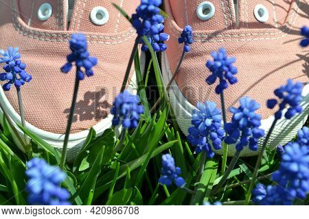 Women's, Teenage, Sports Shoes Of A Delicate Pink Color In A Flower Bed With Blue Flowers.the Concep