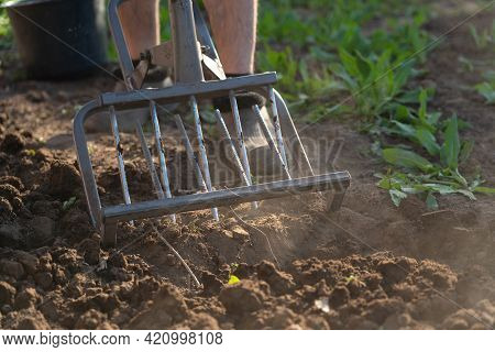 A Farmer Loosens The Soil With A Hand Cultivator. Russia, A Miracle Shovel A Device For Digging Up A