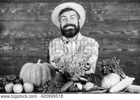 Farm Market Harvest Festival. Man Mature Bearded Farmer Hold Vegetables Wooden Background. Sell Vege