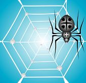 Black garden spider and web with dew on blue gradient background. poster