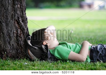 Boy Sleeping Under Tree