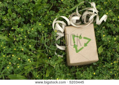Environmentally Friendly  Gift