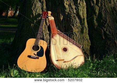 Two Instrumets Near Tree