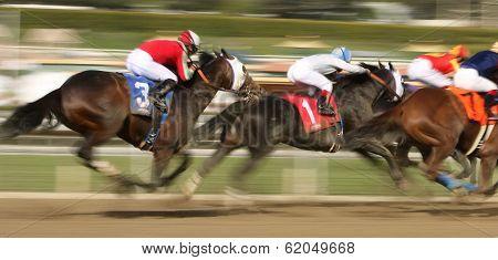 Winning The San Carlos Stakes