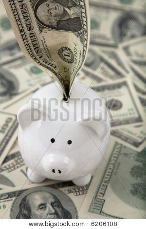 Money Stuffed Into Piggy Bank