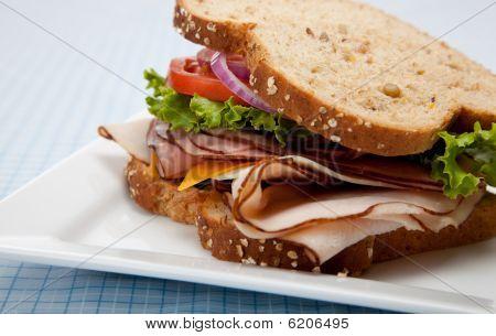 Turkey Sandwich su pane di grano intero